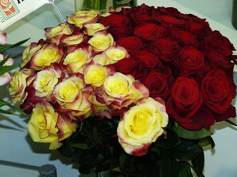 Букет роз картинка подруге